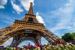 Wide shot of Eiffel Tower with dramatic sky and flowers Royalty Free Stock Photo