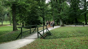Wide shot of four young women walking in green park stock video footage