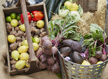 Wide shot of fruit and vegetables in a basket Royalty Free Stock Images