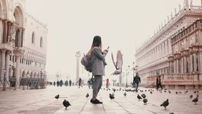 Wide shot of happy female tourist taking smartphone photos on amazing San Marco square full of birds in Venice, Italy. Excited travel blogger girl sharing stock footage