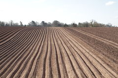 Wide shot of a ploughed field Royalty Free Stock Photos