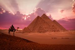 Pyramids giza cairo egypt with bedouin at sunset phantasy royalty free stock photos