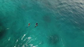 Wide ocean and two scuba divers. A wide shot of the sea and shot tilts down to show 2 scuba divers on sea stock video