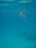 Wide Shot of Woman Snorkeler Looking Down Stock Photos