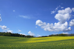 Wide spring view Royalty Free Stock Image