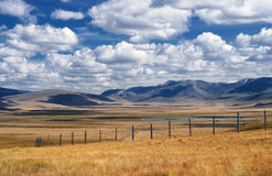 A wide steppe with yellow grass on the Ukok plateau Stock Photos