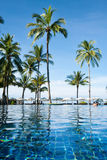 Wide swimming pool in resort. Wide swimming pool view with dad and daugther Royalty Free Stock Images