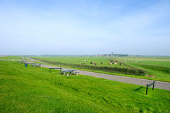 Wide typical Dutch landscape. The island Ameland with a typical Dutch landscape from pastures and cows royalty free stock image