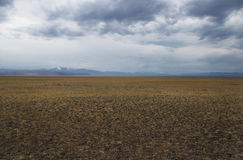A wide valley steppe plateau with yellow grass and stones under a cloudy sky. On the background of mountain ranges. Altai mountains Siberia Russia Stock Photo