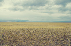 A wide valley steppe with yellow grass under a cloudy sky Stock Image