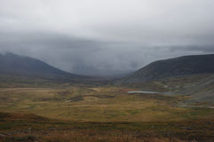 A wide valley with yellow grass on the Ukok plateau Royalty Free Stock Photography