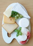 Different types of cheeses on the porcelain plate Royalty Free Stock Photos