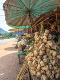 Lao crops for sale at roadside. Wide variety of produce for sale at roadside stalls along the road between Vientiane and Vang Vieng , Laos Stock Photo
