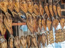 Dried fish for sale at roadside. Laos Royalty Free Stock Photography