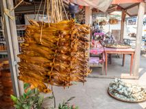 Dried fish for sale at roadside. Laos Royalty Free Stock Photo