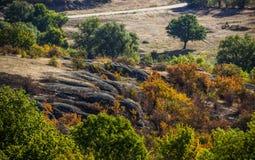 A canyon stones. Wide view of Arbuzinskiy Canyon, Nikolaev region, Ukraine Stock Photo