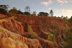 Wide view of the cliffs, pine trees and sky Stock Photo