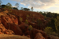 Wide view of the cliffs, with pine trees and sky (II) Stock Image