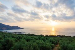 Wide view of a Cretan landscape, island of Crete, Greece Royalty Free Stock Image