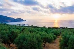 Wide view of a Cretan landscape, island of Crete, Greece Royalty Free Stock Image