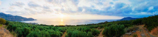 Wide view of a Cretan landscape, island of Crete, Greece Stock Image