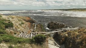 Wide view of the dark tannin water at the arthur river mouth in tasmania. Wide view of the rugged coastline and dark tannin stained water at the arthur river royalty free stock images