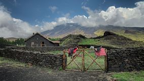 Wide view Galvarina Refuge with leather saddles and horses under Etna Mount. Sicily stock photo