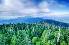 A wide view of the Great Smoky Mountains  from the top of Clingma Royalty Free Stock Photography