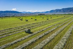Wide View of Green Farm Field Royalty Free Stock Image
