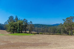 Wide view of green garden with grass, trees, plants, mountain and pathway,Ooty, India, 19 Aug 2016 Stock Images