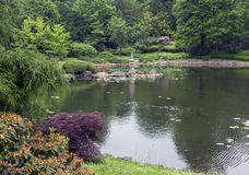 Wide view of a japanese garden Stock Image