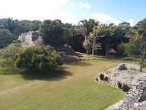 Wide view of Kohunlich Mayan ruins. And surrounding jungle, in Quintana Roo, Mexico Royalty Free Stock Image