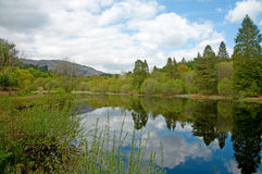 Wide view of the loch Stock Photo
