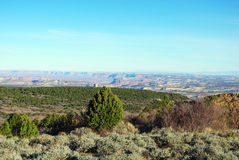 Wide view from mountain road, Utah. Wide view of canyons and high desert from mountain road near Monticello, Utah Royalty Free Stock Image