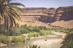 Free Wide View Of Canyon And Cultivated Fields And Palms In Errachidi Stock Photography - 66370722