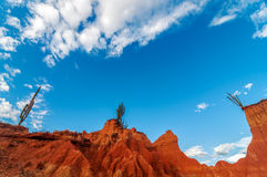 Wide View of Red Landscape Stock Photo