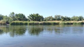 Arizona, Salt River, A wide view of the Salt River with trees and bushes on the opposite shore. A wide view of the Salt River with trees and bushes on the stock video footage
