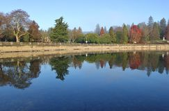 Stanley Park`s Vancouver Seawall Royalty Free Stock Photos