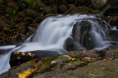 Wide waterfall in the autumn forest Stock Image