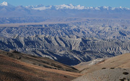 Wide west Tibet. The clay forests in west  Tibet Royalty Free Stock Image
