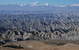 Wide west Tibet. The clay forests in west  Tibet Stock Photography