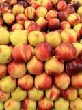 Wideangle do montão de nectarina amarelas e vermelhas orgânicas frescas Imagens de Stock Royalty Free
