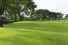 Widely golf  course in very nice day in summer Stock Photo