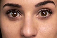 Widely open eyes of young woman. Close up face of pretty girl with open brown eyes. Eyes expression of surprise stock images