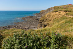 Widemouth Bay Water Cove near Bude Cornwall England UK Stock Photo