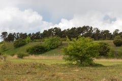 Wideness de paysage protégé Gnitz chez Usedom, Allemagne image libre de droits