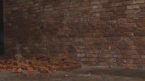 Wideo czerwone cegły kłama na ziemi przed ścianą Najpierw niektóre mali kawałki cementowi początki spadać puszek wtedy zdjęcie wideo