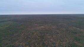 Wideo od trutnia step Chyornye Zemli czerń Ląduje rezerwat przyrodego zdjęcie wideo