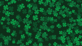 Widescreen clover background Royalty Free Stock Photography