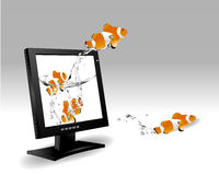 Widescreen lcd monitor. Frontal view of wide screen LCD monitor, and clown fish jumping out of the screen Stock Photography